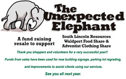 The Unexpected Elephant
